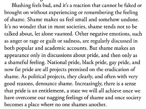 Blush Faces of Shame by Elspeth Probyn