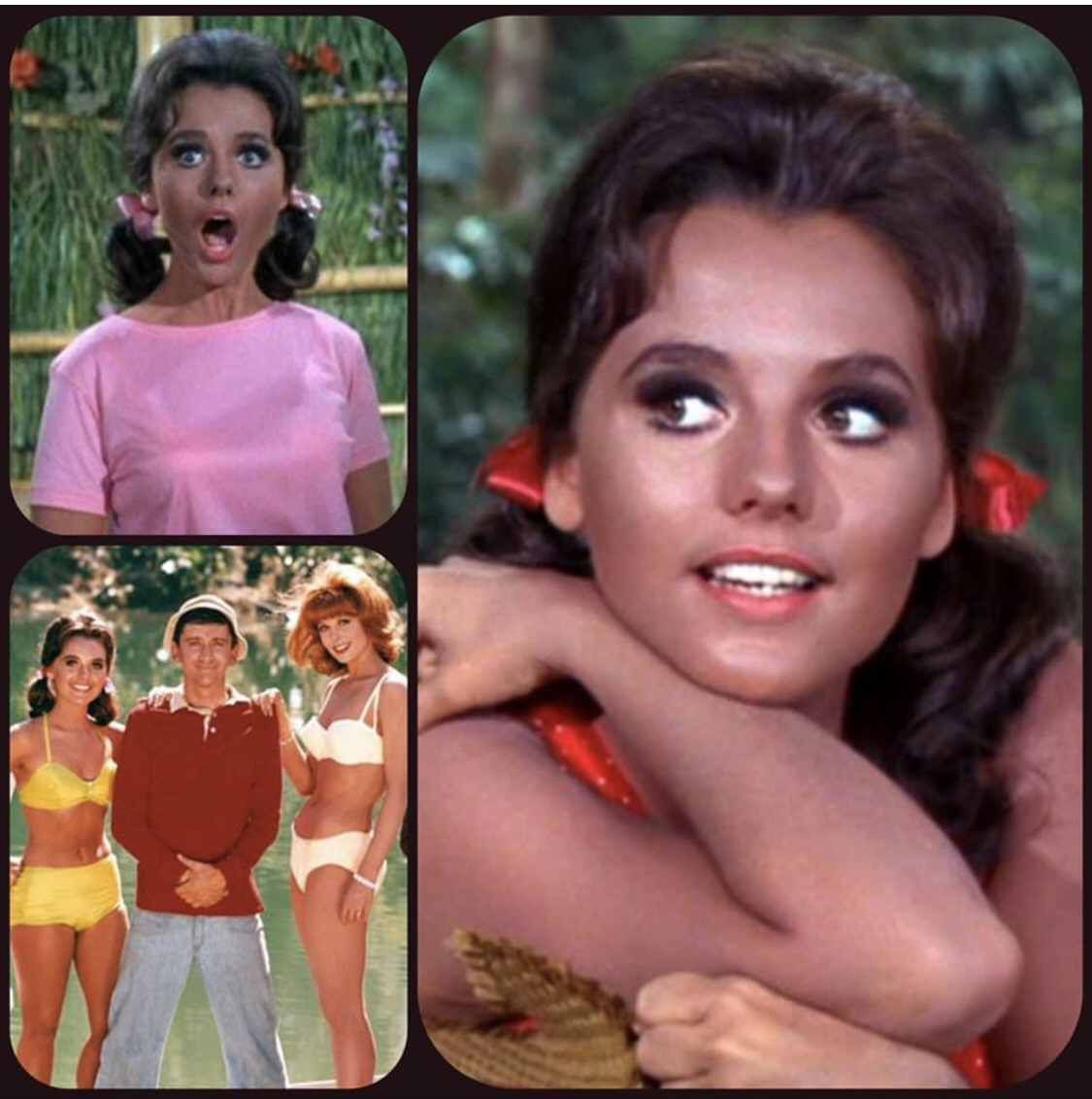 Goodnight Dawn Wells